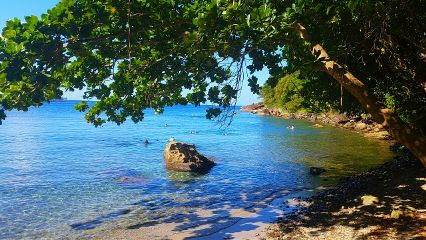 snorkeling caribbean shadows saintlucia