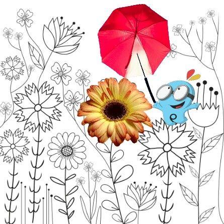 freetoedit squarefit cutout cutouttool color