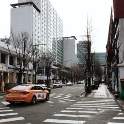 freetoedit korea street streetphotography coldmorning