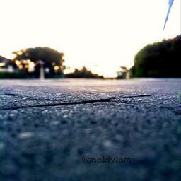 blur nature view