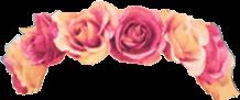 flower crown kawaii flowercrown cute