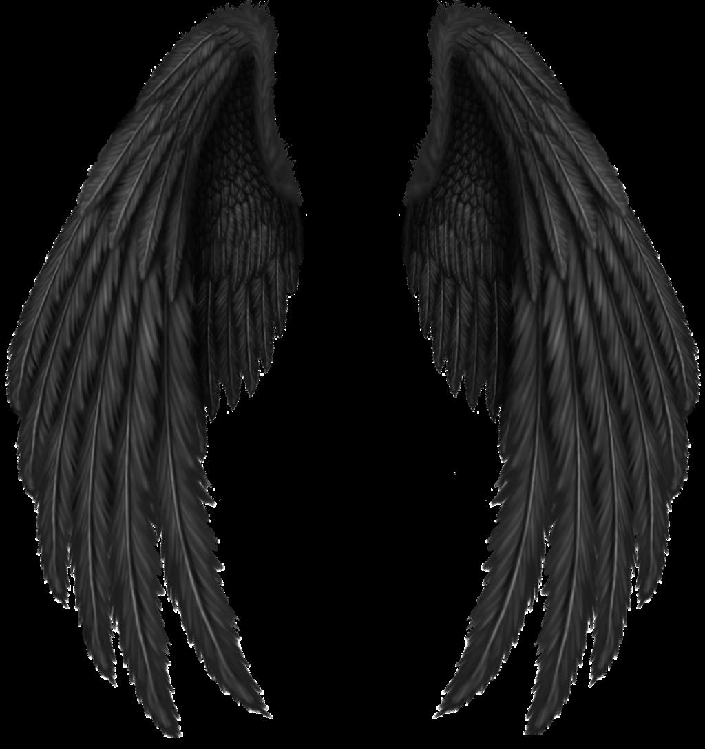 #крылья